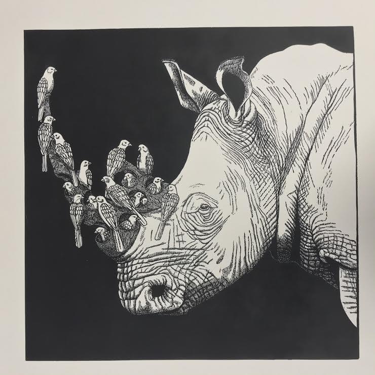 White Rhino and Friends